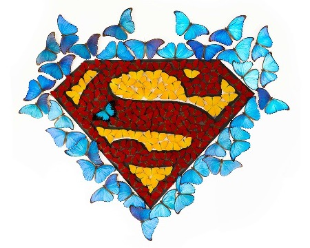 "Superman - Acrylic drawing on paper with mounted butterflies - 54""x47""x3,9"""